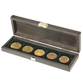 Coin cases for multiple coins